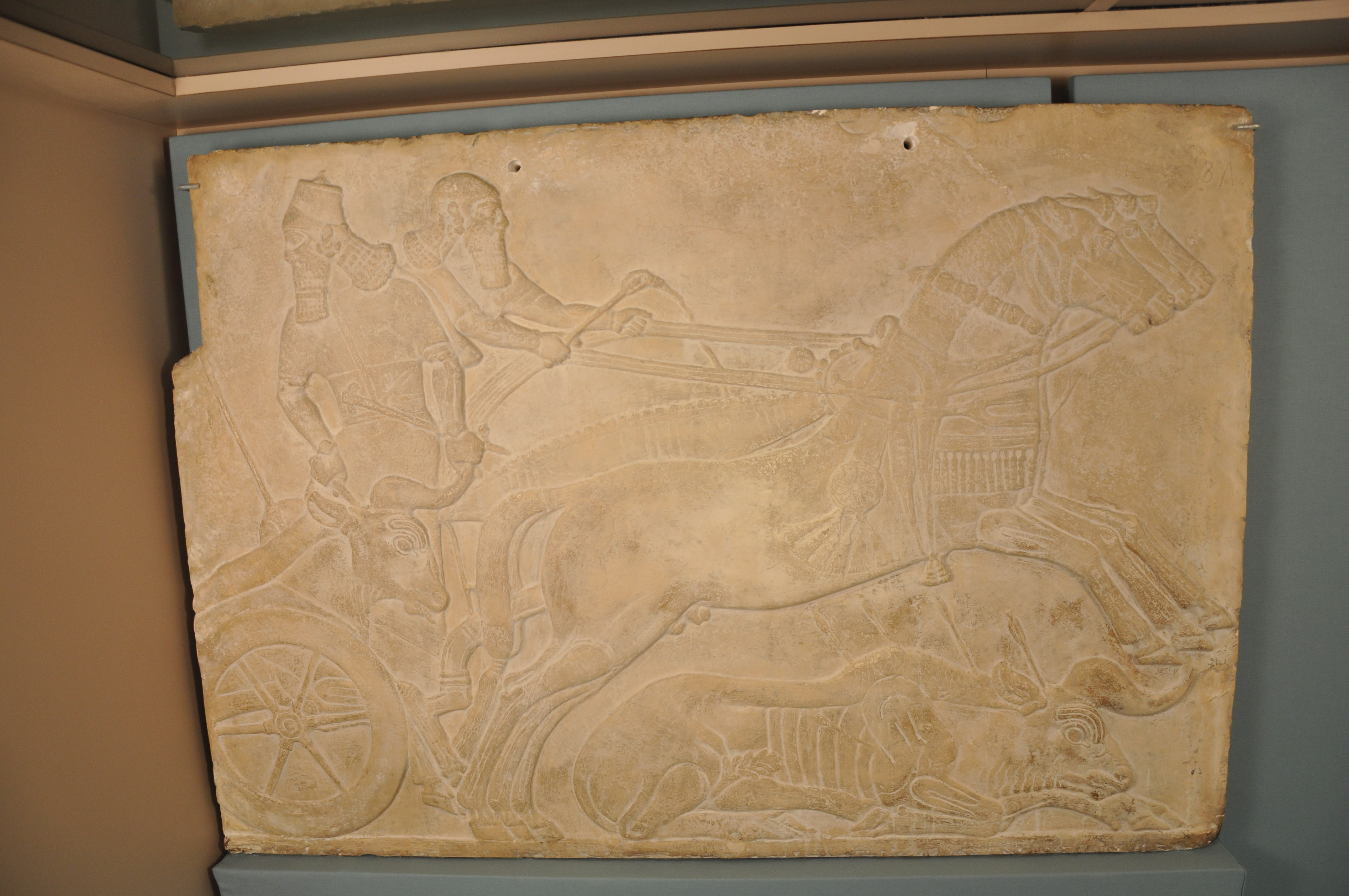 Plaster Cast of Bas Relief: Ashurnasirpal II King of Assyria Hunting ...