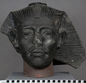 Thumbnail of Plaster Cast of Portrait Head: Sesostris III (1948.01.0050)