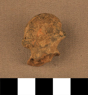 Thumbnail of Figurine Fragment: Head (2000.17.0009)