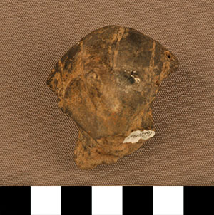 Thumbnail of Figurine Fragment: Head (2000.17.0015)