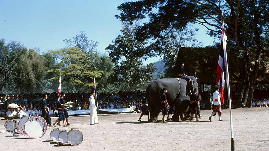 An elephant is led across the grounds, followed by a band