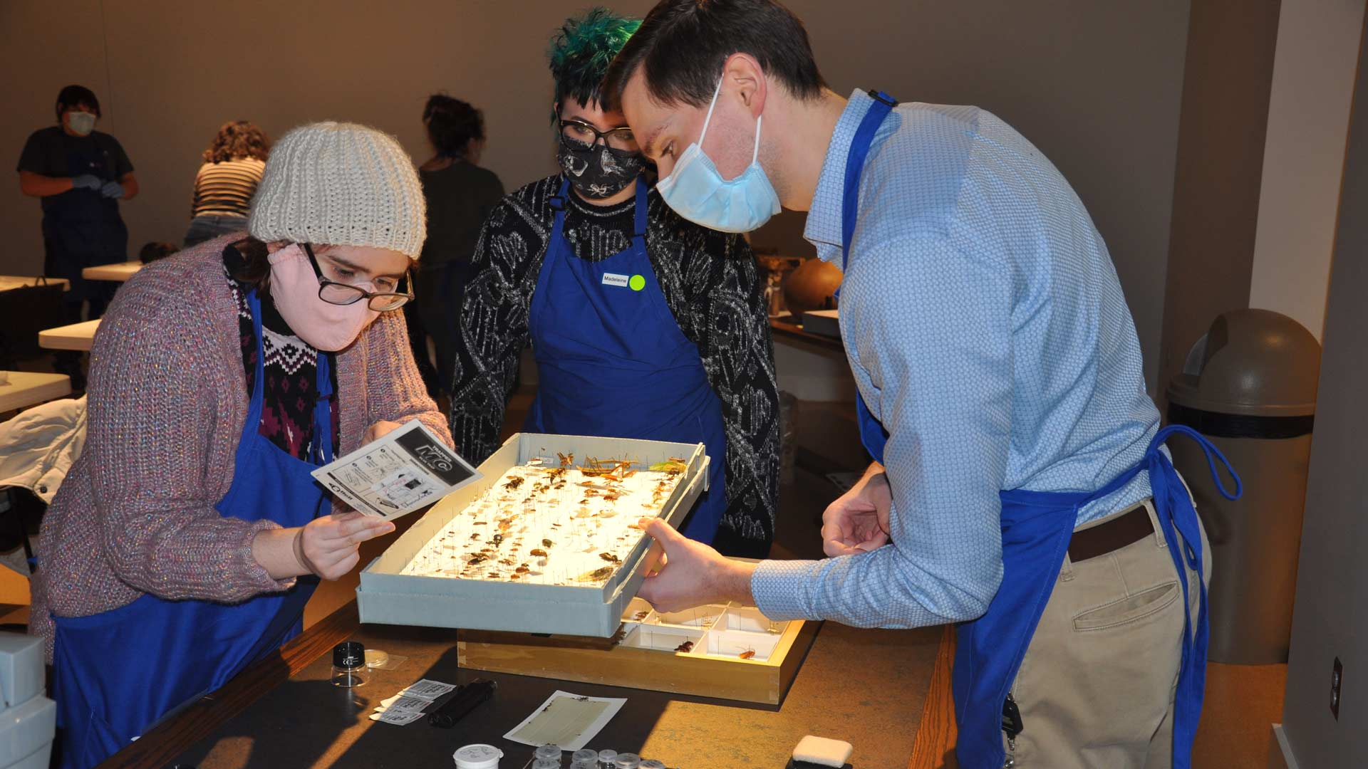 man in a mask holding a box of insects while two students in masks look at the box