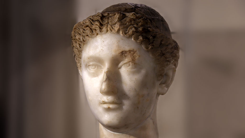 bust of a woman with brownish curly hair
