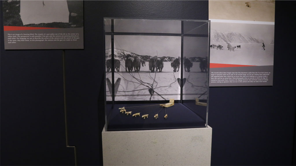 artifacts in display case
