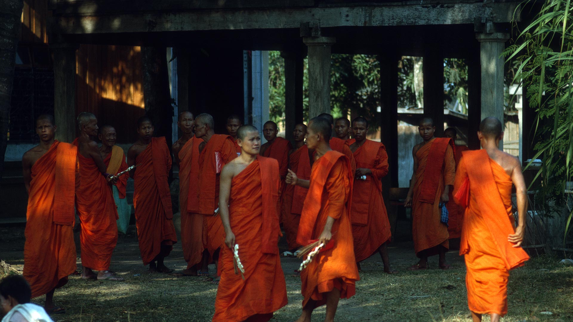 group of monks dressed in orange robes standing outside
